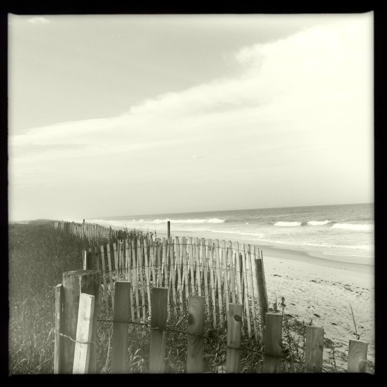 Playalinda Beach - Weathered Fence